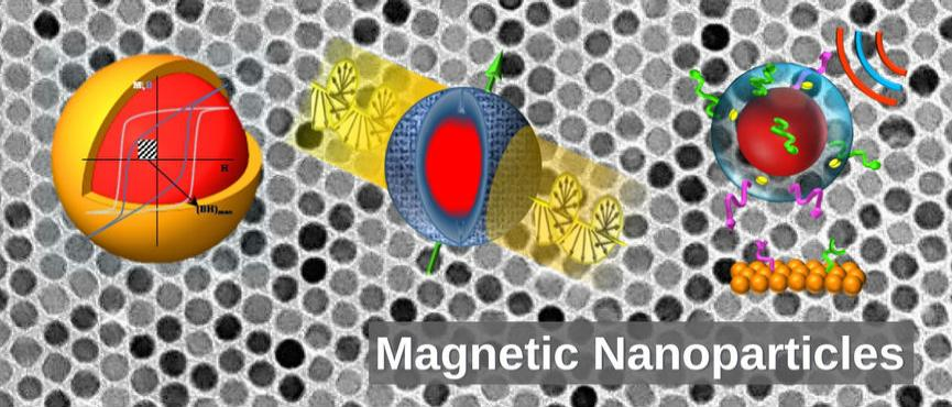 Magnetic Nanoparticles